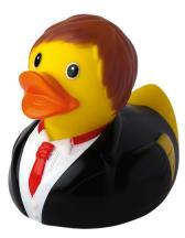 Schnabels® Squeaky Duck Groom